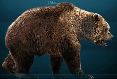 EUROPEAN CAVE BEARS HAD PURE HERBIVOROUS DIET
