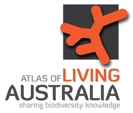 atlas-logo_big.jpg