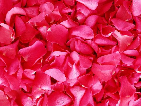 rozenblaadjes.jpg