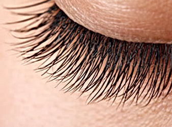 mink-eyelash-extensions-refill.jpg
