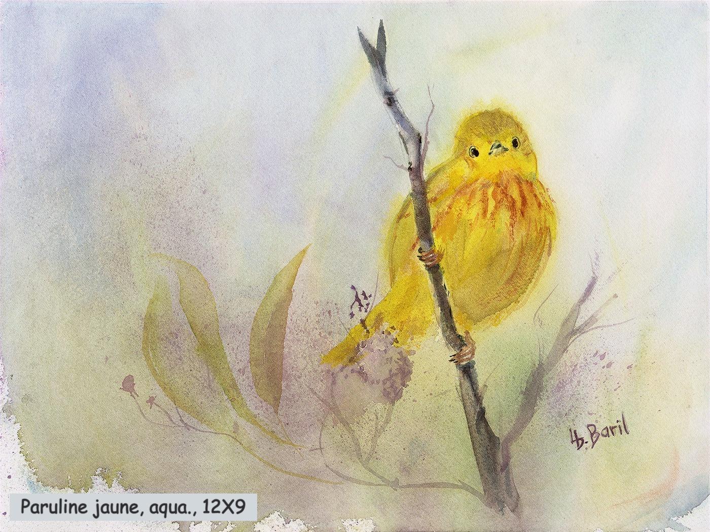 Paruline jaune, aquarelle, 12X9