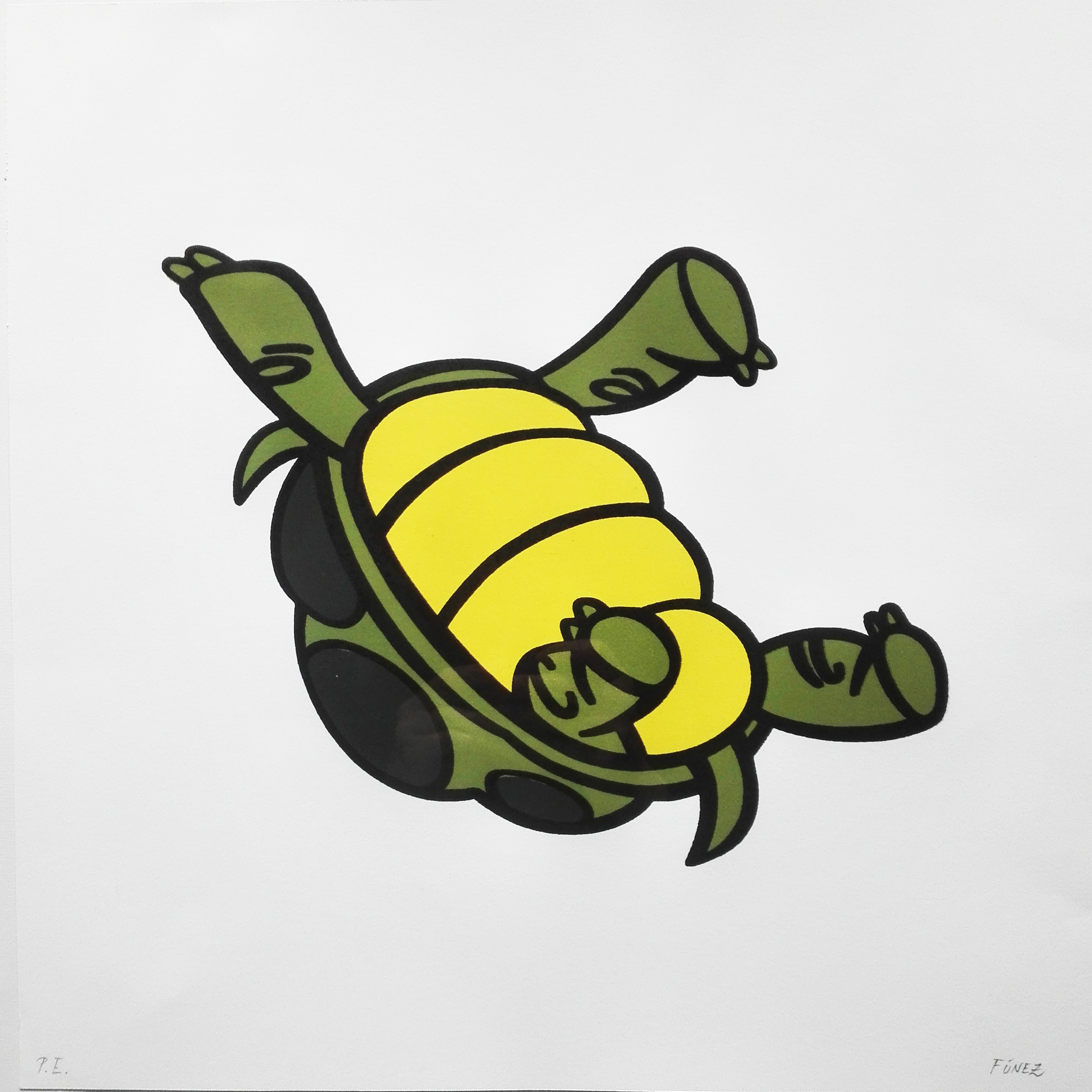 "ANIMATED DISORDERS ""TURTLE"""