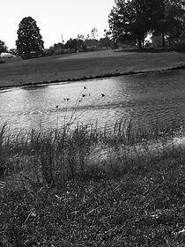 Copy of Highlands6DavisPhotography.JPG.j
