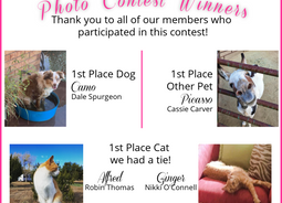 Announcing the Winners of our Pet Photo Contest