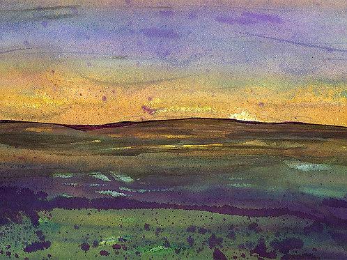 Yorkshire Moors2