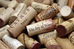 Carta dei Vini - Wine List
