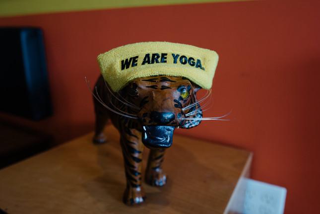 Bengal Tiger Strength