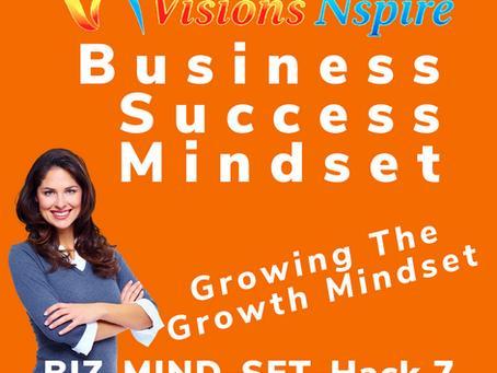 THE BIZ MINDSET HACKS - DAY 7 - The Growth Mindset