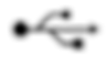 LYNQ USB Type C
