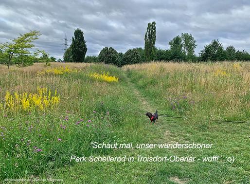 Marla Peppels unterwegs im Park Schellerod