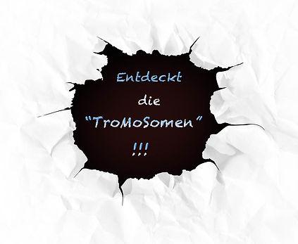 TroMoSomenGrafik1014b.jpg
