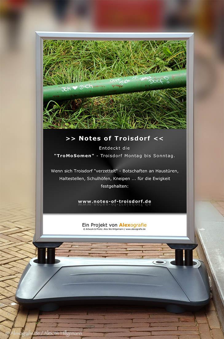 Notes of Troisdorf - TroMoSomen