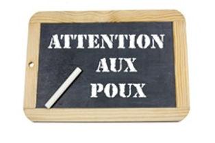 Vign_prevention-poux_ws1004326190.jpg