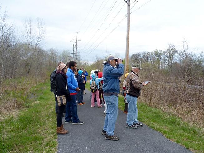 Abrams Creek Path.jpg
