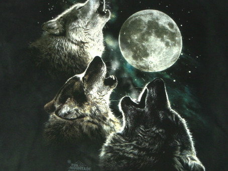 Who's in Your Wolf Pack?