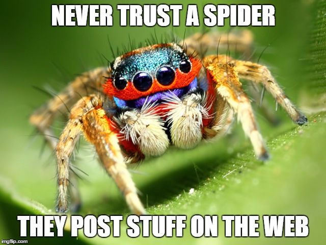 Never trust a spider. They post stuff on the web.