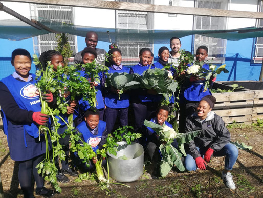 The Importance of Food Gardens in South African Schools