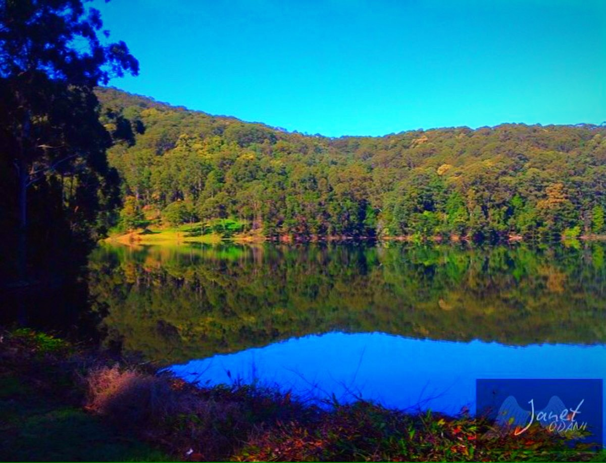 Karangi dam, Coffs Harbour