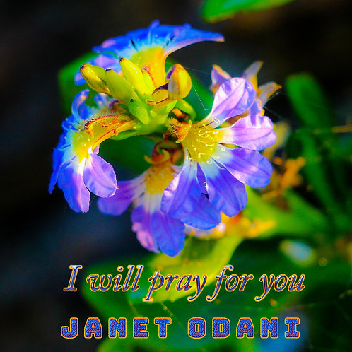 I will pray for you by Janet Odani