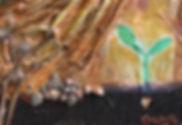 Parabole grain sénvé