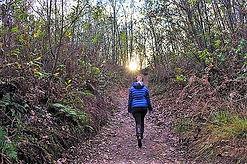 chemin hiking-328671_640.jpg