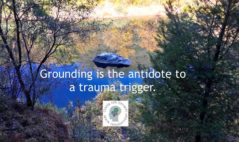 GroundingisAntidotetoTrigger2020.03.14.j