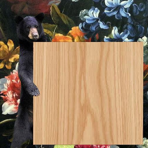 black-bear-standing new times copy.jpg22.jpg