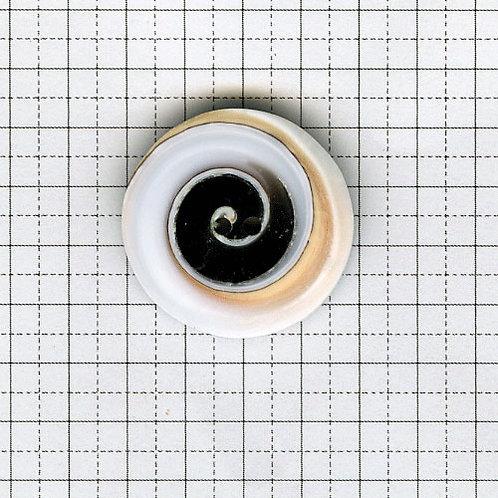 貝のボタン 3-600-N01