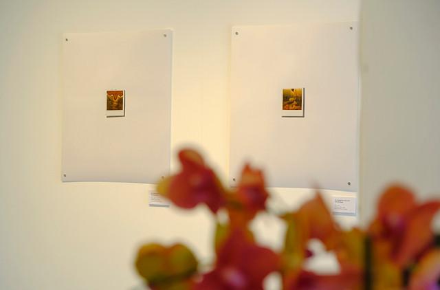 Fukushima Exhibition 18