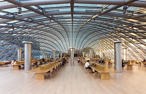 Mansueto Library.jpg