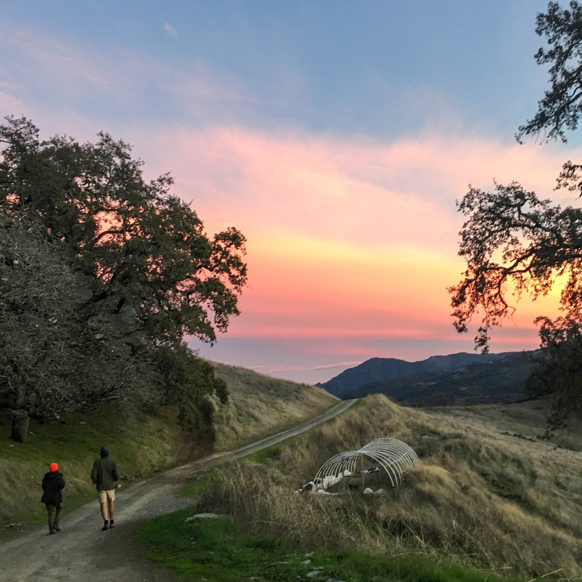 Scenes of Northern California 12