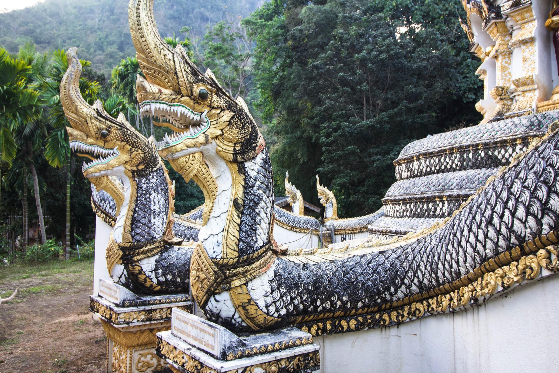 SS_THAILAND_2019_12- 2.jpg