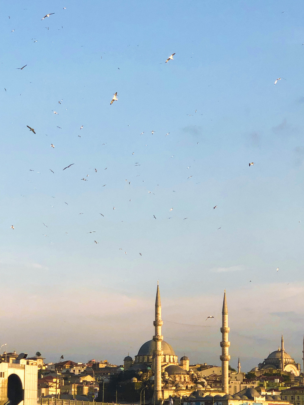SS_TURKEY_2019_45-.jpg
