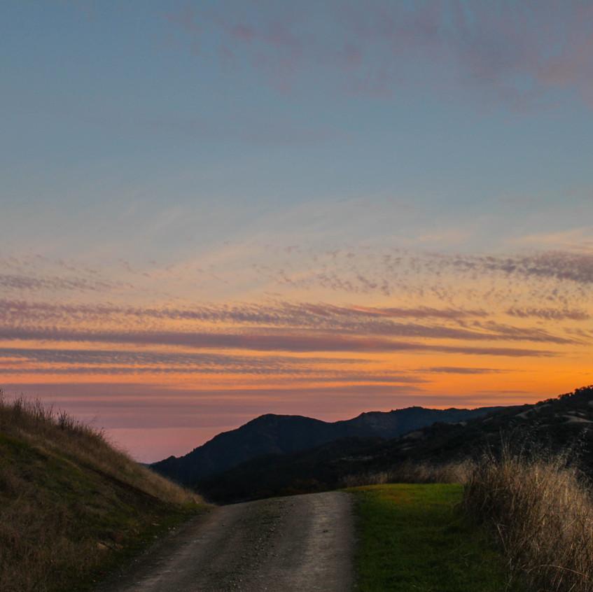 Scenes of Northern California 14