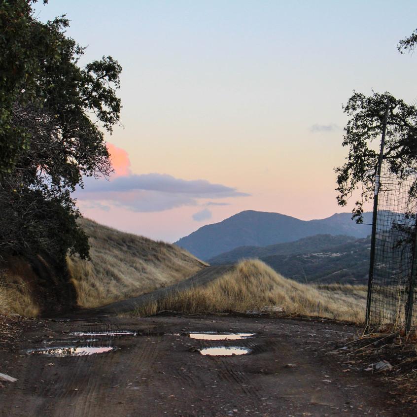 Scenes of Northern California 18