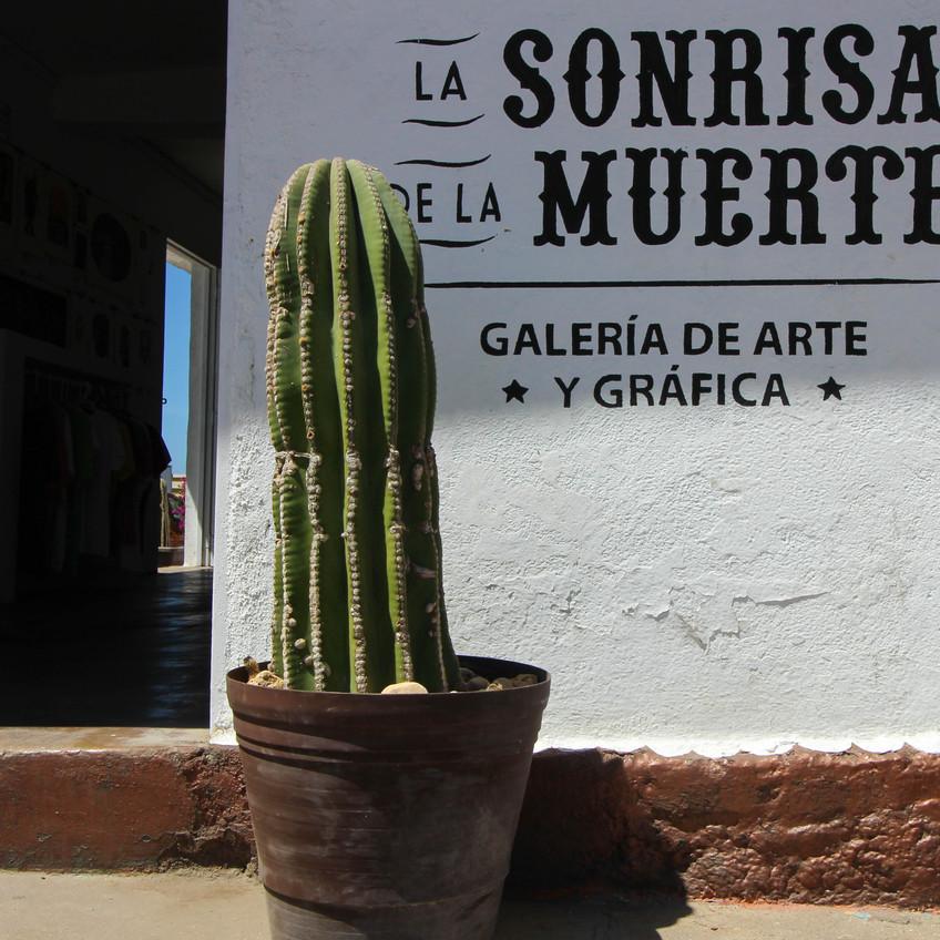 Todos Santos Art Gallery