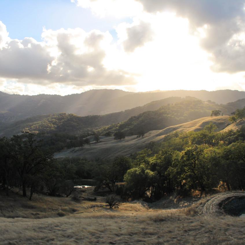 Scenes of Northern California 4
