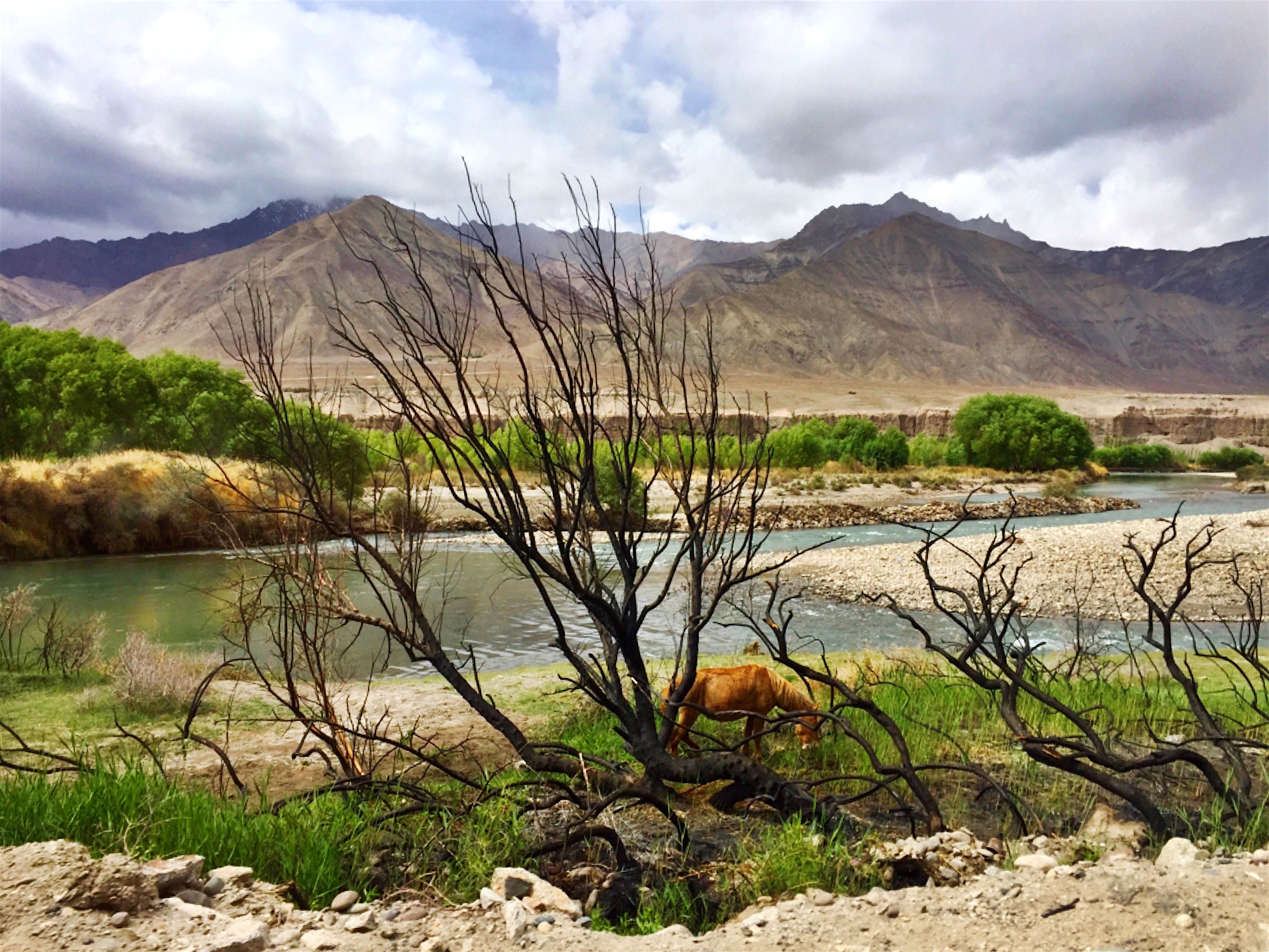 Scenes along the Indus