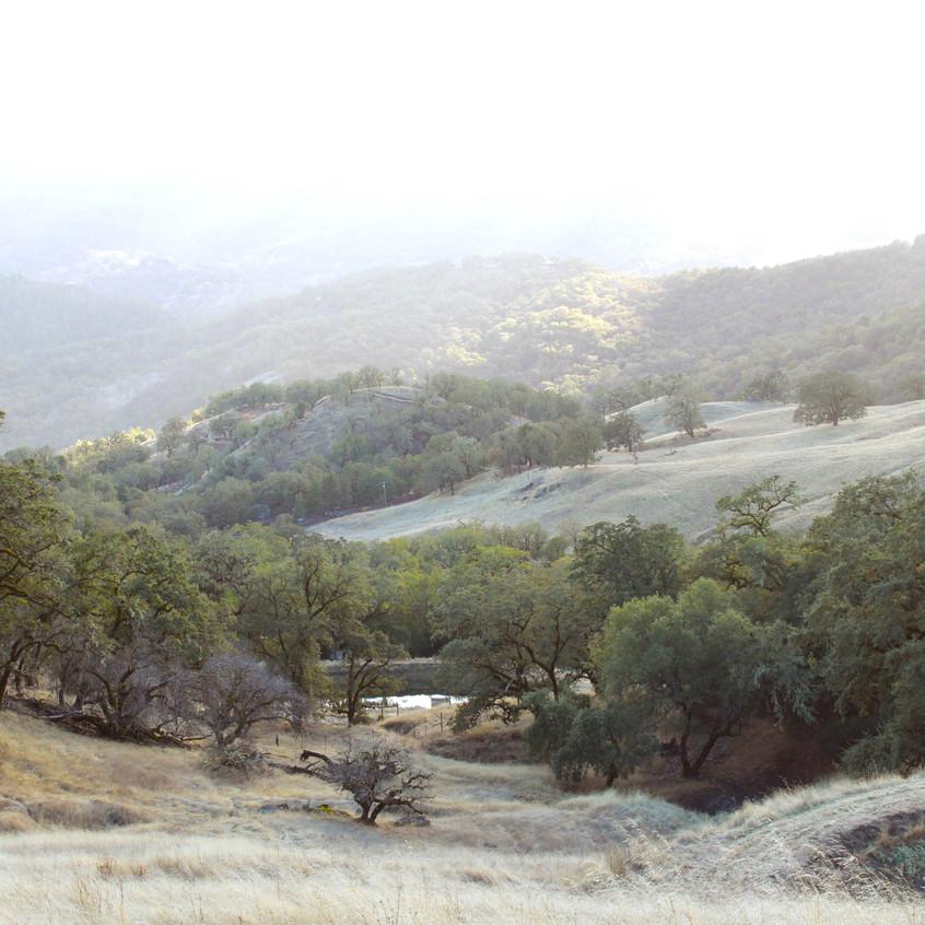 Scenes of Northern California 15
