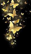 Butterfly Pic (2).jpg