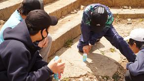 4月の郷中教育は筑波山登山に行きました!