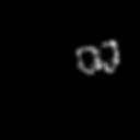 Sain Visage Logo