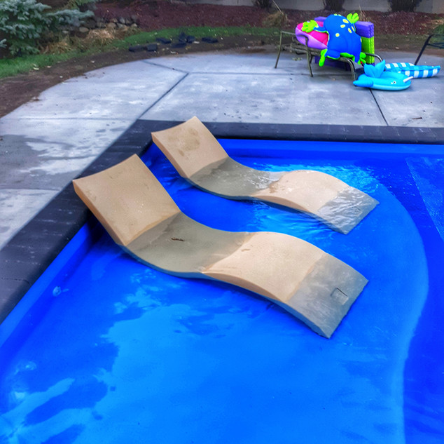 D Series Pool with Ledge Loungers
