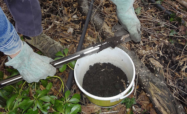 Person collecting soil for soil analysis