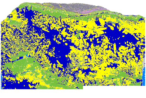 ore mineral map_microXRF