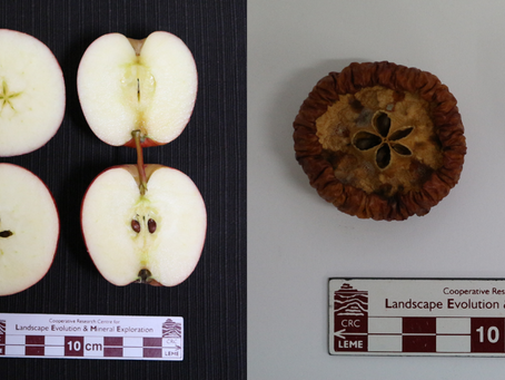 Rotten Apples: Dead or Alive?