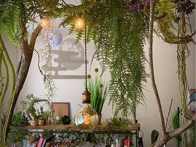 室内緑化・空間演出