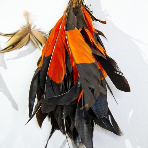 Aboriginal art on display