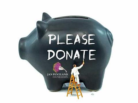 donation-pig.jpg