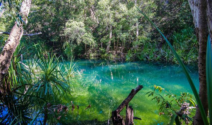 Kakadu waterhole